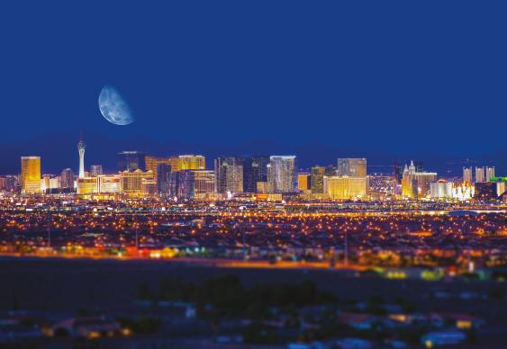 The Beat - Vegas Baby